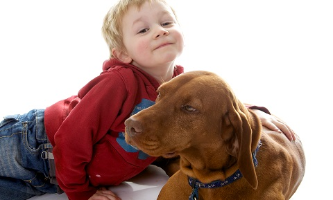 Dog Behavior Problems – Aggression – Children
